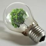 ¿Cómo ahorrar energía en la escuela?