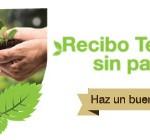 recibo telmex